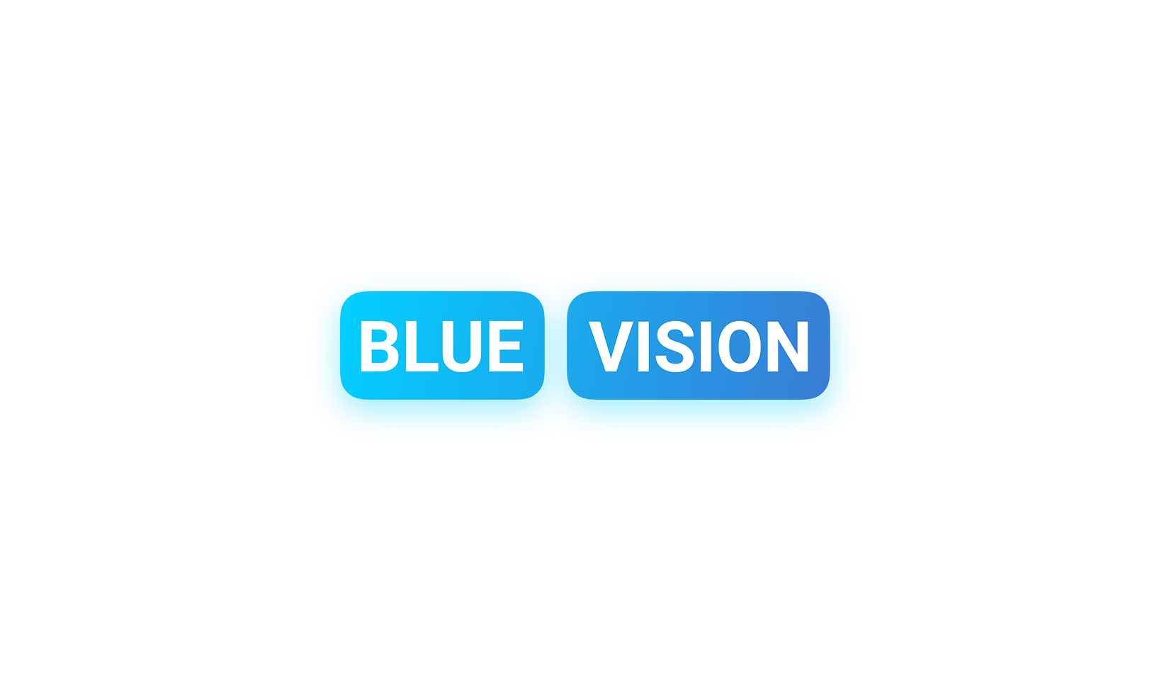 Blue Vision Labs